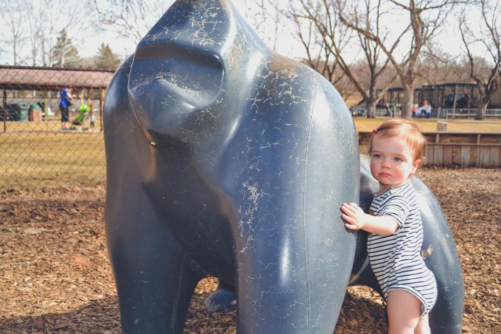 St Pattys Zoo Fun-18