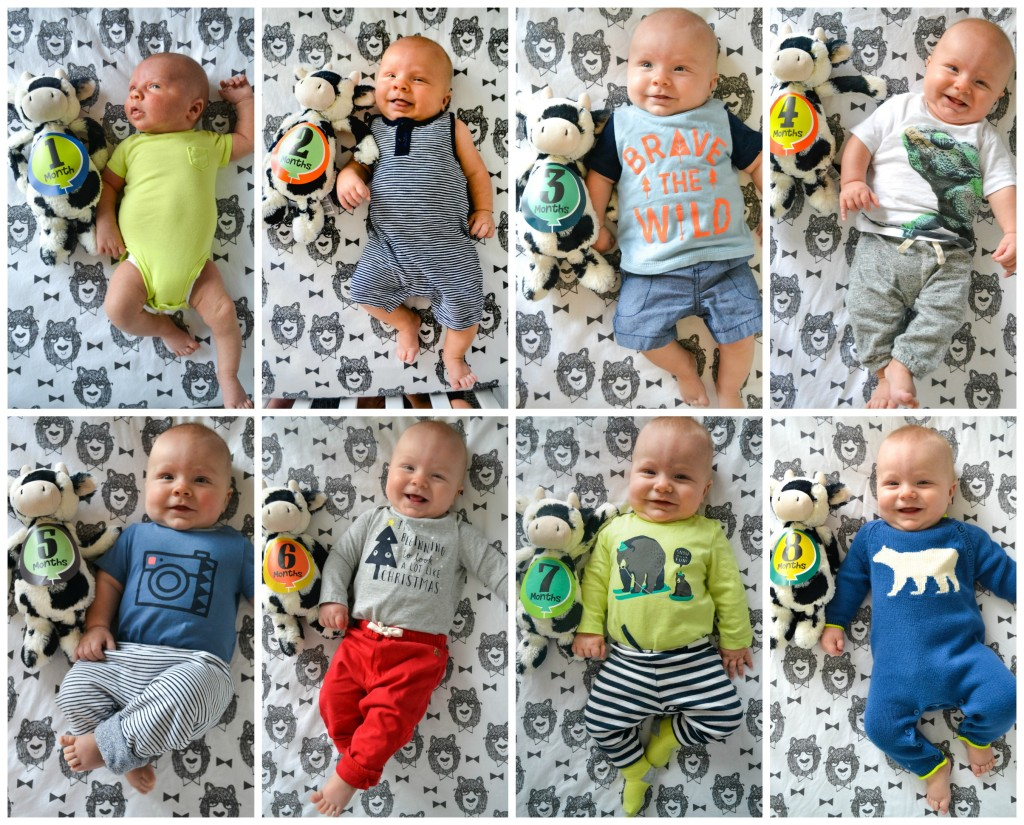 Leo8monthscollage
